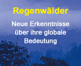 Regenwald-Forschung Link