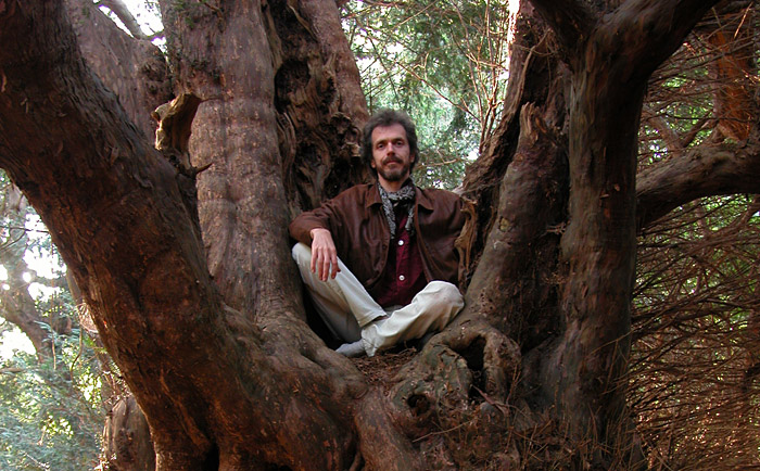 Fred Hageneder sitting in ancient yew tree