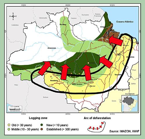 Waldzerstörungsgrenze im Amazonasbecken