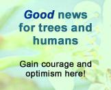 link to Good News
