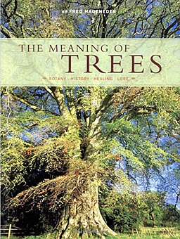 book cover Hageneder The Meaning of Trees