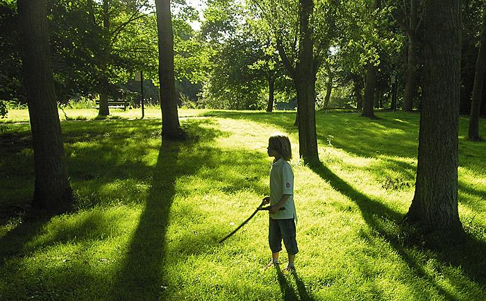 Un chico entre los árboles al atardecer