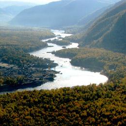 Margens arborizadas do Rio Jenissei na Sibéria