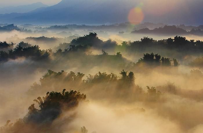 rainforest evaporation © aslysun/shutterstock